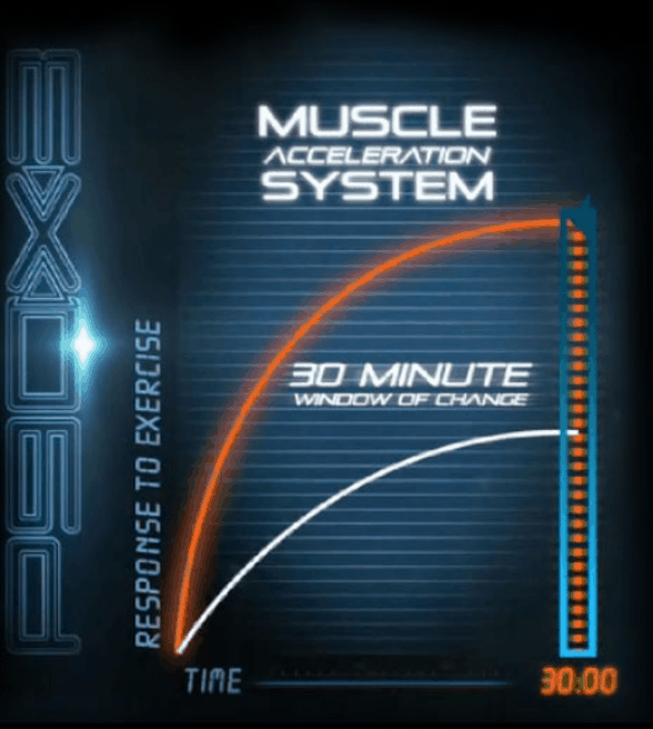 the muscle acceleration system