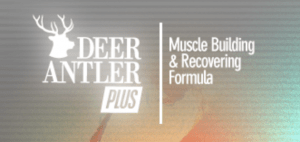 deer antler plus bodybuilding supplement