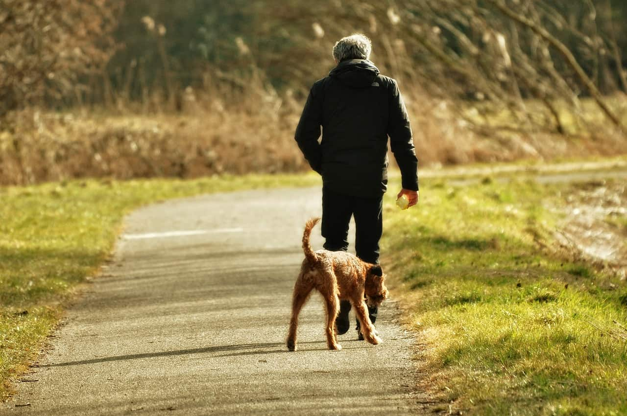 is walking good for back pain