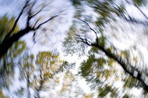 blurred trees from feeling dizzy