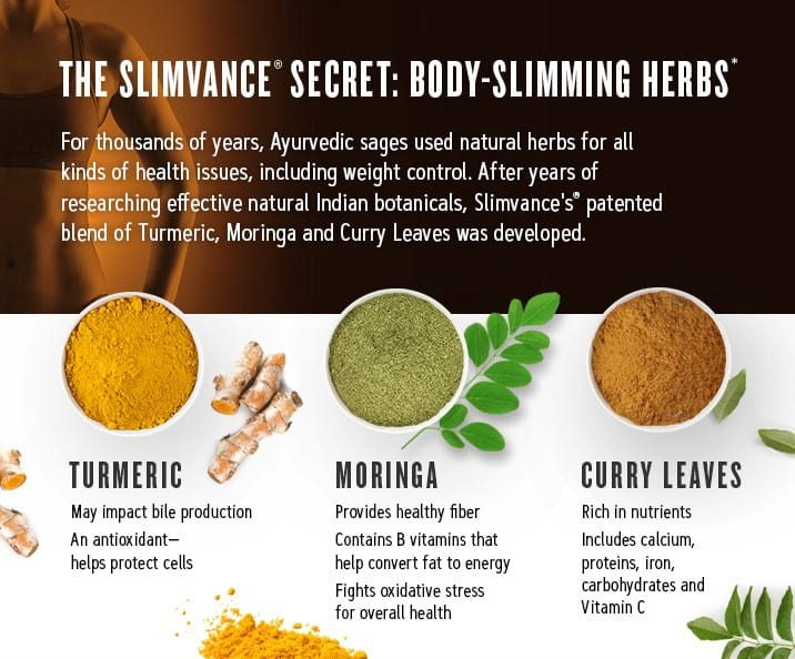 the list of weight loss ingredients