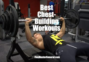the best chest workouts