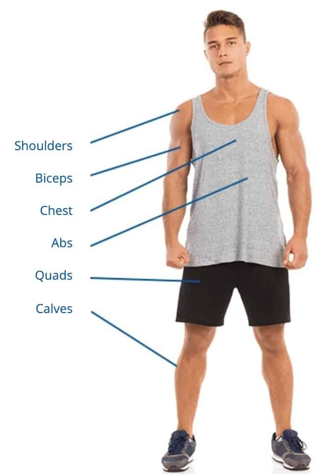total gym exercise options front